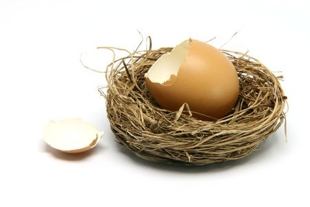 nesting and divorce